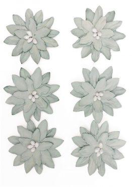 Kwiaty Dalia szary