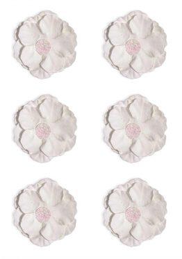 Kwiaty Clematis biały
