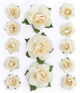 Kwiaty Róże brzoskwiniowy